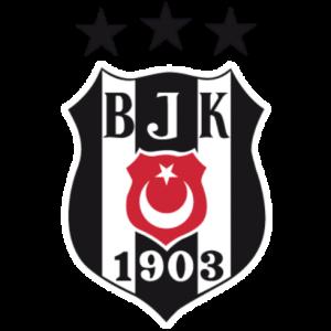 DLS Beşiktaş Logo