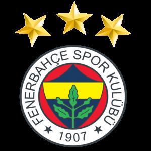 dls fb logo