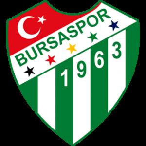 dls bursaspor logo