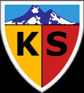 dls kayserispor logo