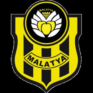 dls yeni malatya logo