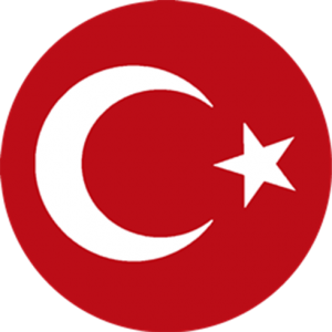 dls türkiye logo